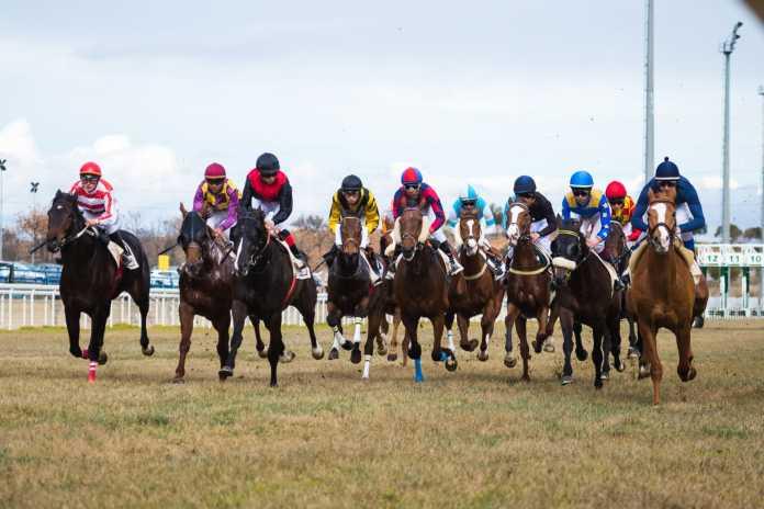 última jornada de carreras de caballos