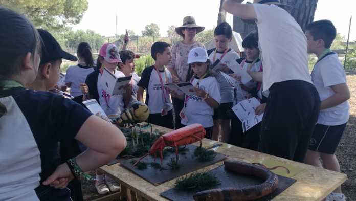 taller de huertos ecológicos