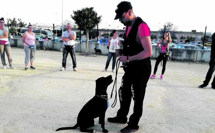 nueva promoción de adiestradores caninos