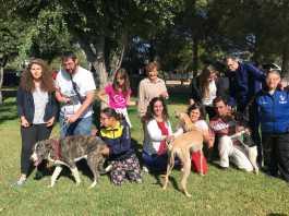 perros y personas