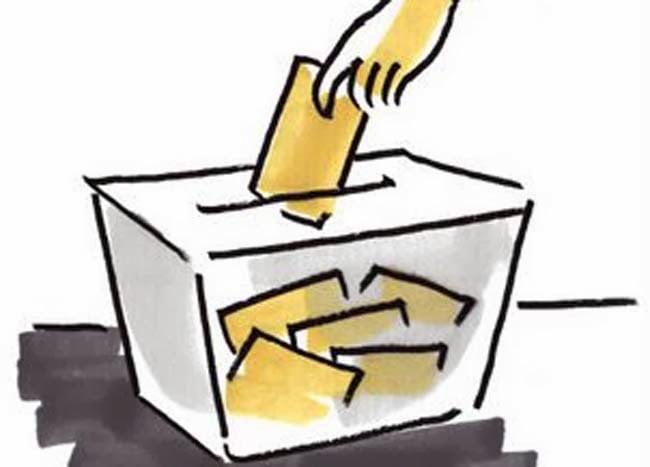suspensión de los procesos electorales